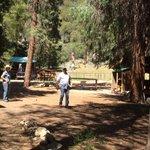 Cedar Grove Pack Station - Kings Canyon National Park