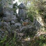 Fistik in the ruins at Hoyran village.