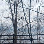 冬の支笏湖2(国道より)