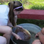 Instruction in panning for gold