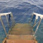 Вход в море с понтона