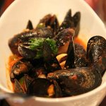 Mussels appy