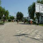 Basketball court b block