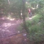 Foto de Lowes Creek County Park