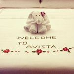 Love the welcome elephant