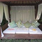 the garden lounger