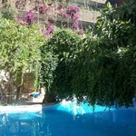 piscine entrée hôtel