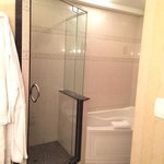 biggest shower ever !!!  pres suite