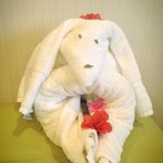 A towel creation our housekeepers create.