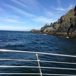 Yukon island from Rainbow tour boat