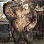 L'orso imbalsamato all'entrata del pub
