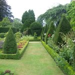 Beautiful hedges