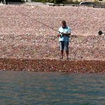 Fishing from Budleigh Salterton shore