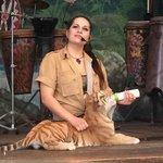 Liger (lion and tiger offspring) and trainer