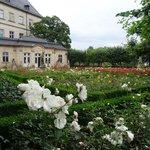 Giardino delle Rose a Bamberg.