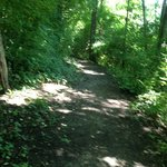 Trails are somewhat maintained