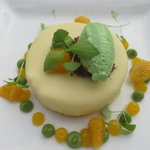 white chocolate covered cake with lime avocado ice cream