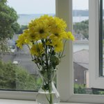 Flowers on the Window-sill