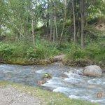 Sinclair Creek (behind our site)