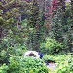 Photo de Rising Sun Campground