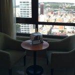 Suite view!