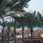 Widok z pokoju - Sharm el Sheikh