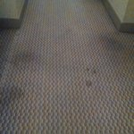 Stained carpet 3rd on floor