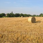 across the fields from Owl Barn