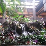 Lobby plants and waterfall