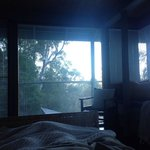 View from bed early in the morning.