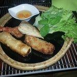 Entrée : Mix de nems : nem thai, samoussa, beignet de crevettes et nem au poulet