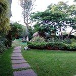 Photo of 100% Natural Cuernavaca Rio Mayo