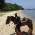 Our horseback riding guide
