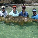 Son catches 250lb Goliath Grouper