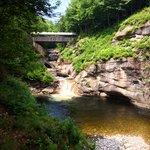 Pool and bridge