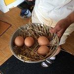 Fresh eggs from the inn's henhouse