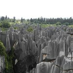 stone forest view from vantage point
