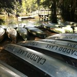 Canoes at the state park