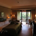 room,  view of garden, swimming pool and merapi mountain