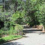 Pathway toward main lodge