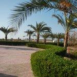 Dai giardini verso la spiaggia si intravede il diving Vivasub esterno alla struttura