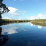 Boat Trip into the delta