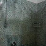 Old shower head- wide spray