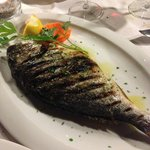 Grilled sea bream... GOOD !  Fresh