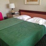 Dirty old broken beds!