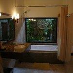 Большая ванная комната с живым садом за стеклом