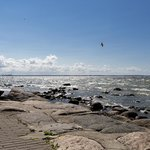 Paat: view across the bay to Tallinn