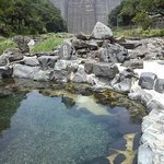 場所は湯原ダムの下の川沿いです