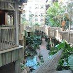 Everglades walkway beneath the restaurant