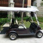Golf carts for transportation....